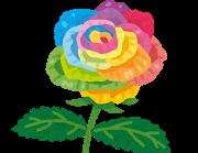 flower_rose_rainbow